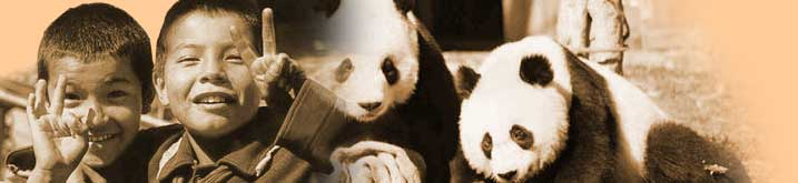 Interasia Tours - Chinese Pandas